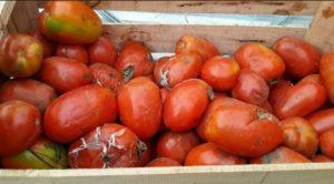 Software Akuntansi Untuk Produksi Saos Sambal Dan Tomat