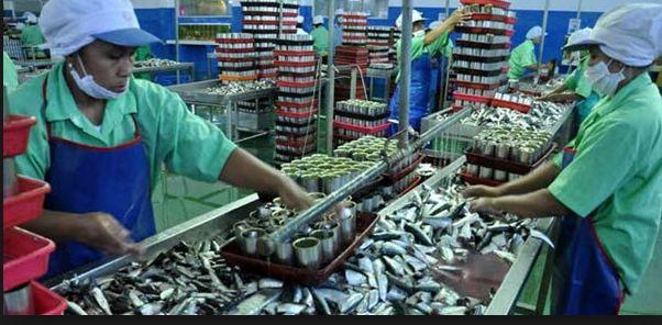 Accurate 5 Software Akuntansi Terbaik bidang usaha Pengalengan Ikan
