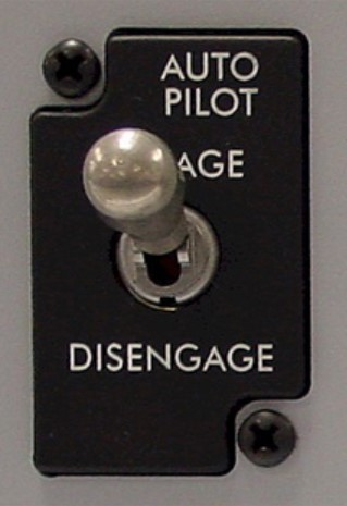 Mengenal Bisnis Auto Pilot