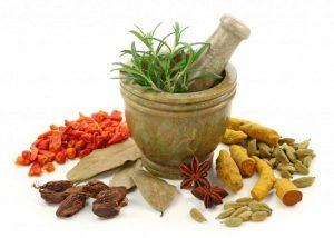 Minuman Herbal Peluang Bisnis Yang Menjanjikan Bagi Pemula. Hubungi: Firdaus 081703354372